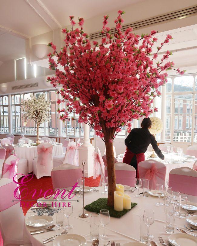 pink blossom tree hire